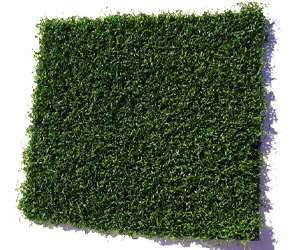 Cesped Artificial Verde
